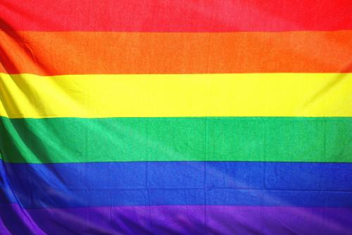 External LGBTQ+ Resources